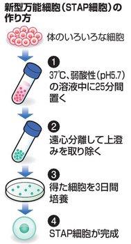 stap3.jpg